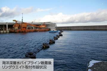 海洋深層水パイプライン融着後リングウエイト取付布設状況