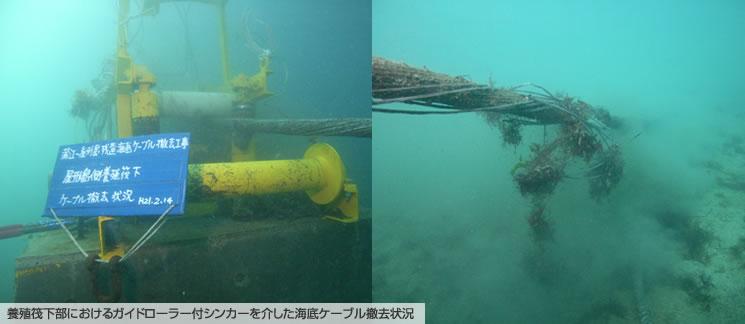 養殖筏下部におけるガイドローラー付シンカーを介した海底ケーブル撤去状況
