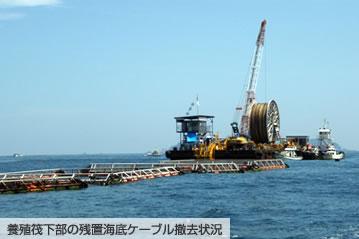 養殖筏下部の残置海底ケーブル撤去状況